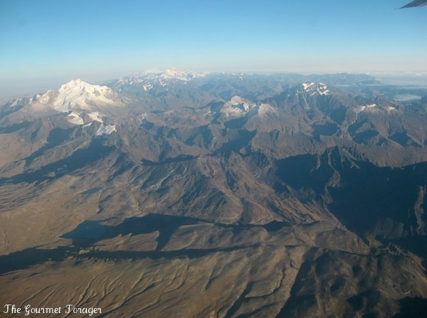 Flight over the Andes
