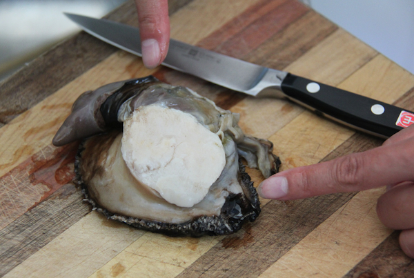Abalone cleaning: 3. Identify the junk bits to discard - the liver, stomach and mouth