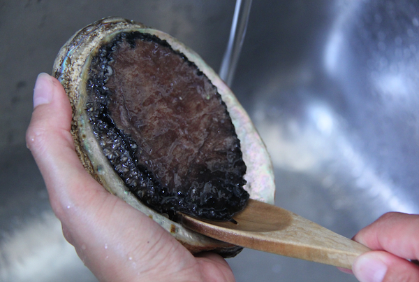 Abalone cleaning: 1. Ease wooden spoon under the foot and lever it off