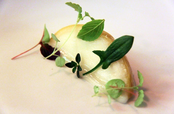Sour lemon with citrus leaves, Sixpenny, Stanmore