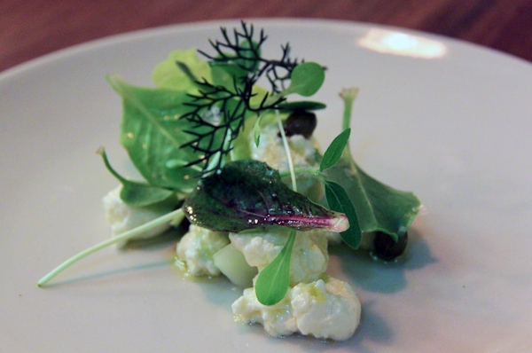 Garden greens and thistle rennet cheese, Sixpenny Stanmore
