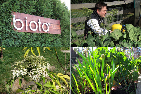 James Viles shows us around Biota's expansive kitchen gardens